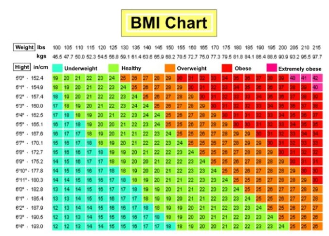 body fat percentage classification chart
